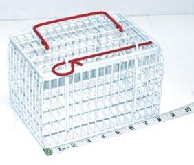 MDC Kitten Cage