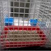 CCN Hospitalisation Cage