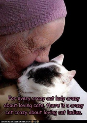 For every crazy cat lady crazy about loving cats, there is a crazy cat crazy about loving cat ladies.