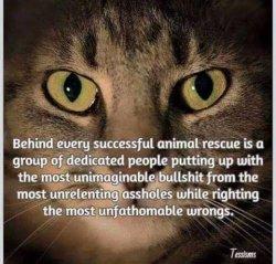 Behind Animal Welfare ...