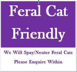 Feral Cat Friendly