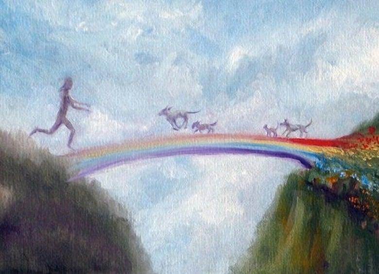 Rainbow Bridge Rescue