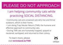 Please Do Not Approach TNR